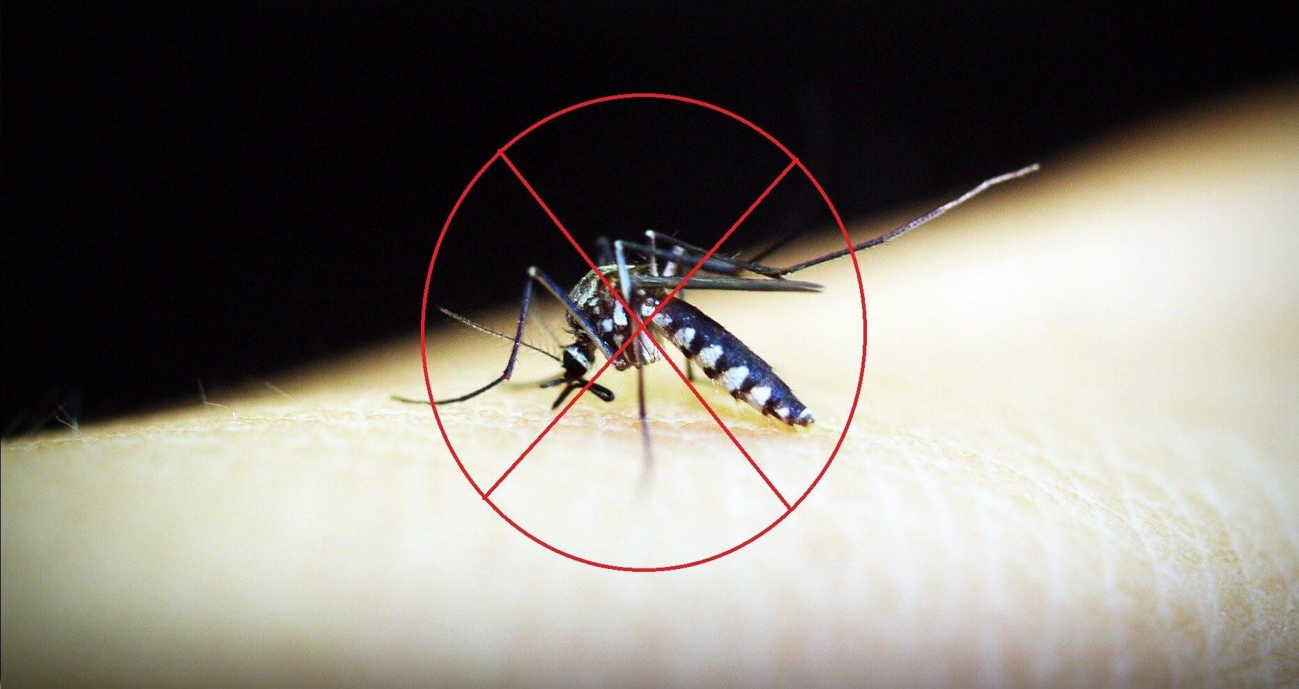 Cách sử dụng bình xịt muỗi đúng chuẩn, an toàn