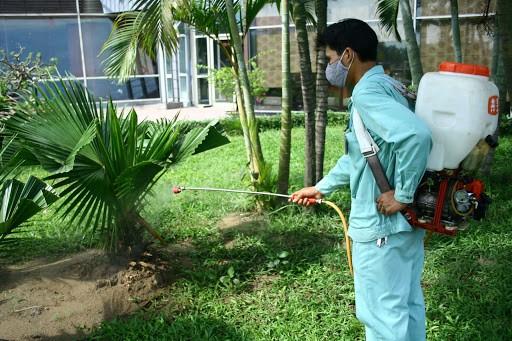 Phun thuốc diệt kiến, muỗi, côn trùng vào mùa mưa