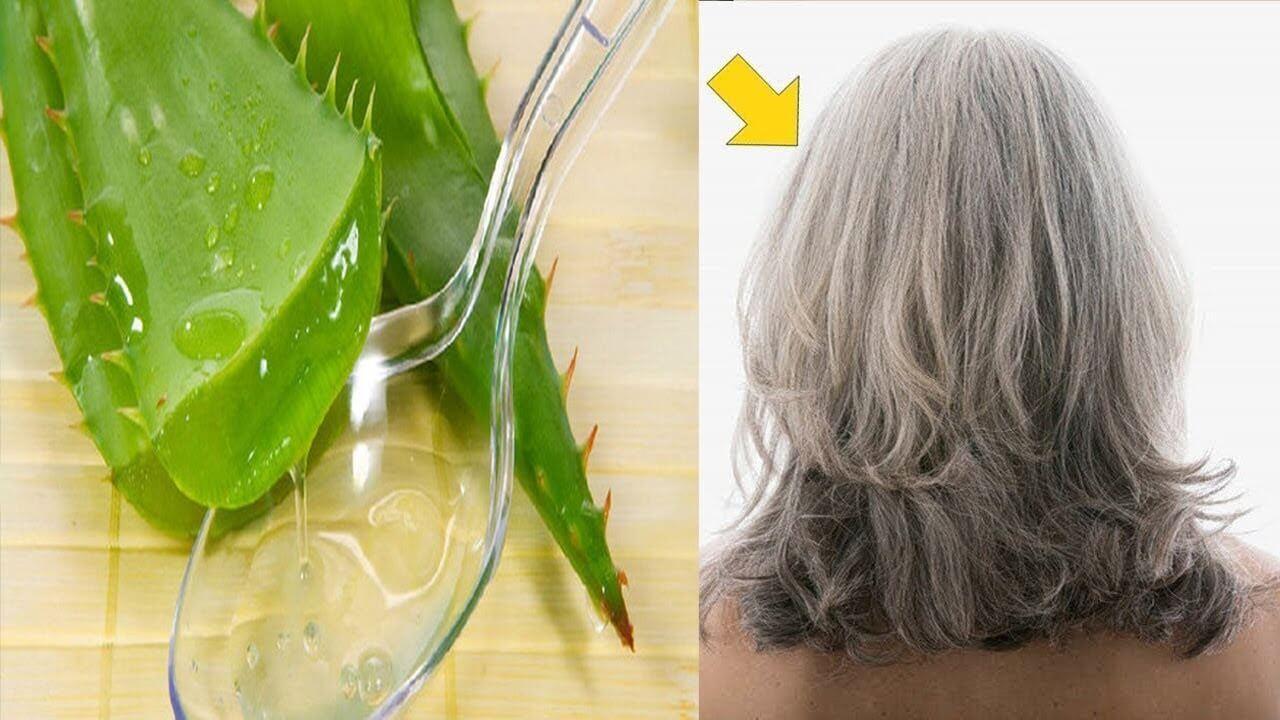 Cách làm tóc mượt bằng nha đam