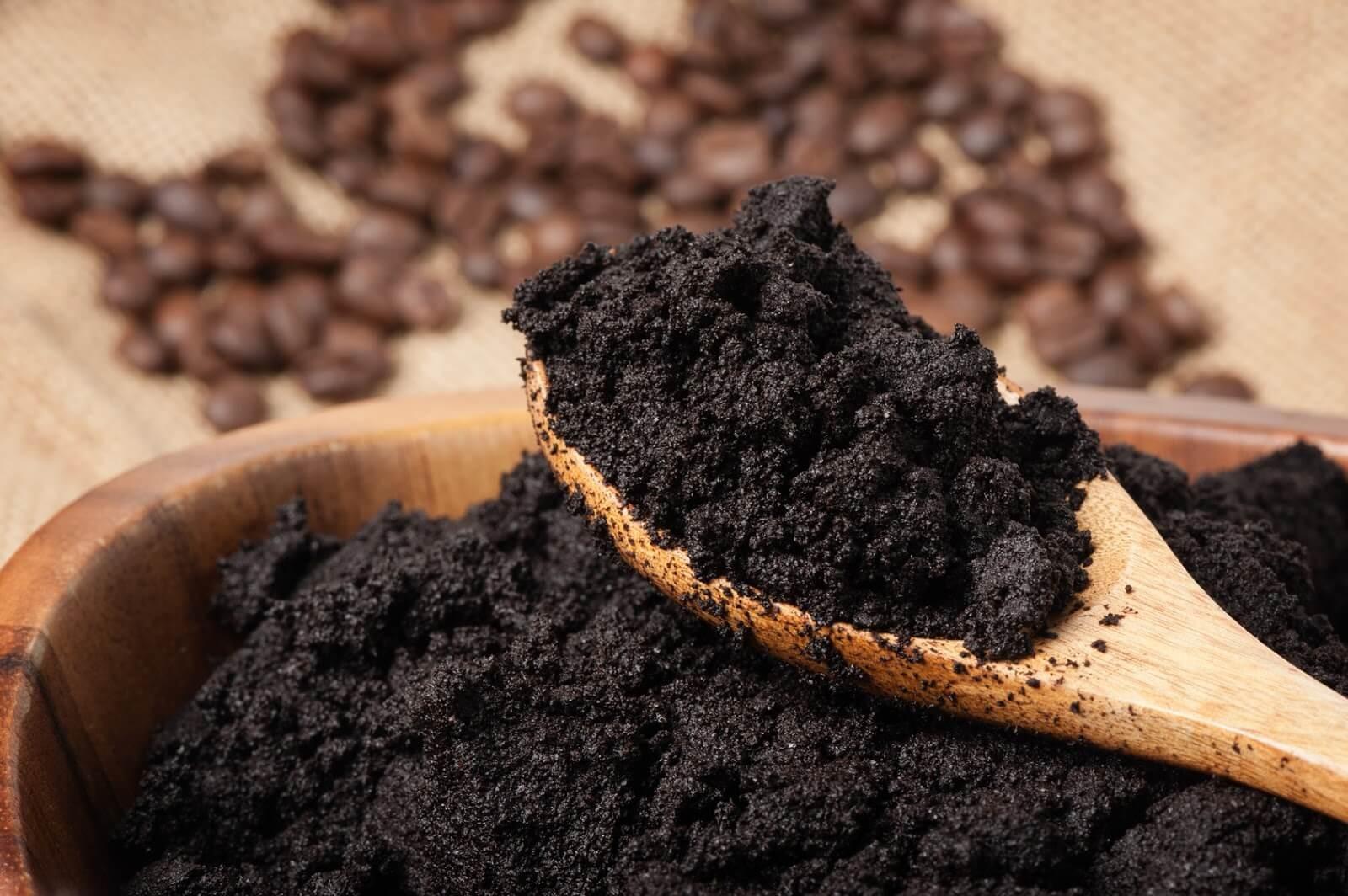 Sử dụng bã cà phê diệt kiến