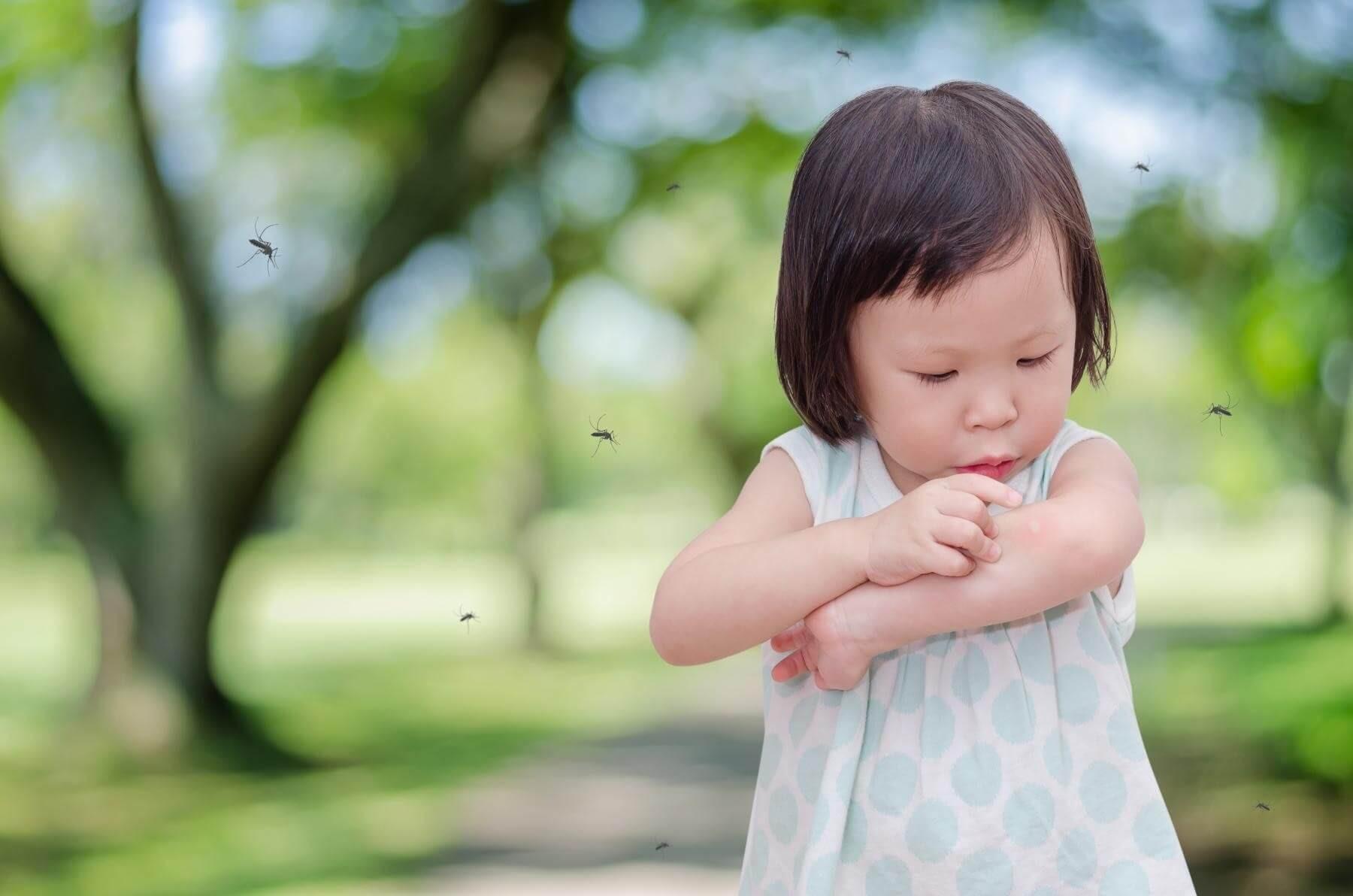 Cách sử dụng thuốc diệt muỗi an toàn