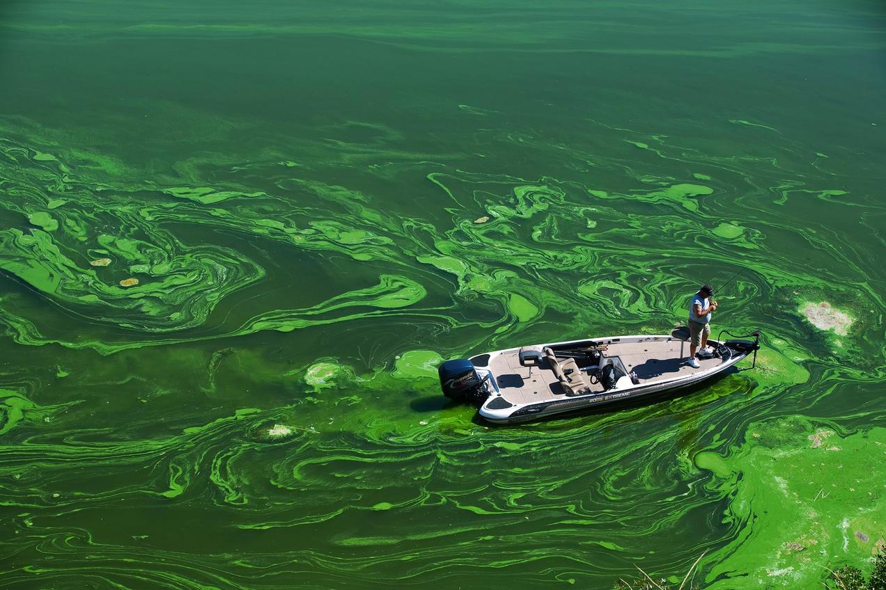 hậu quả của việc ô nhiễm nguồn nước