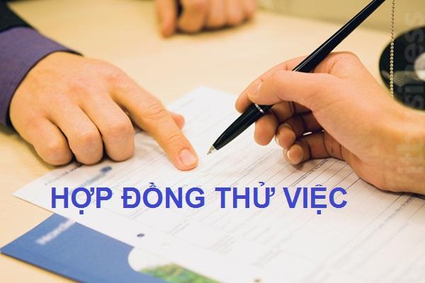 hop-dong-thu-viec