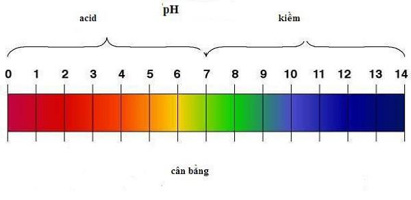 Hình ảnh thang đo độ pH