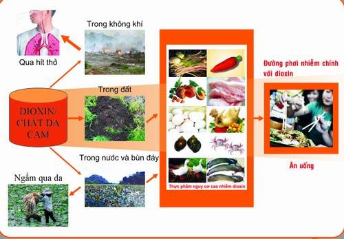 Thực phẩm là con đường phơi nhiễm dioxin chủ yếu