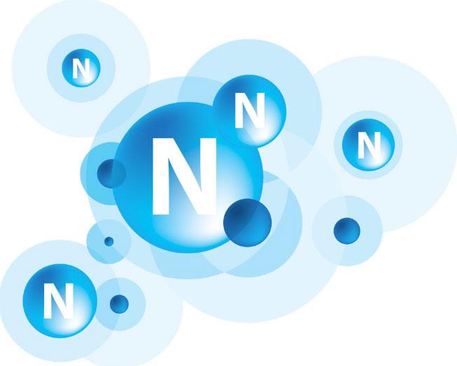 Nitơ là thành quan trọng cấu tạo nên tế bào sống