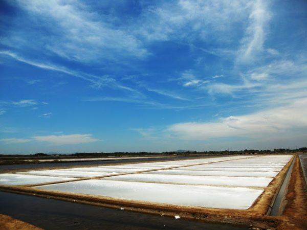 quy trình sản xuất muối sạch trên cát - Ruộng muối chia ô vuông vắn