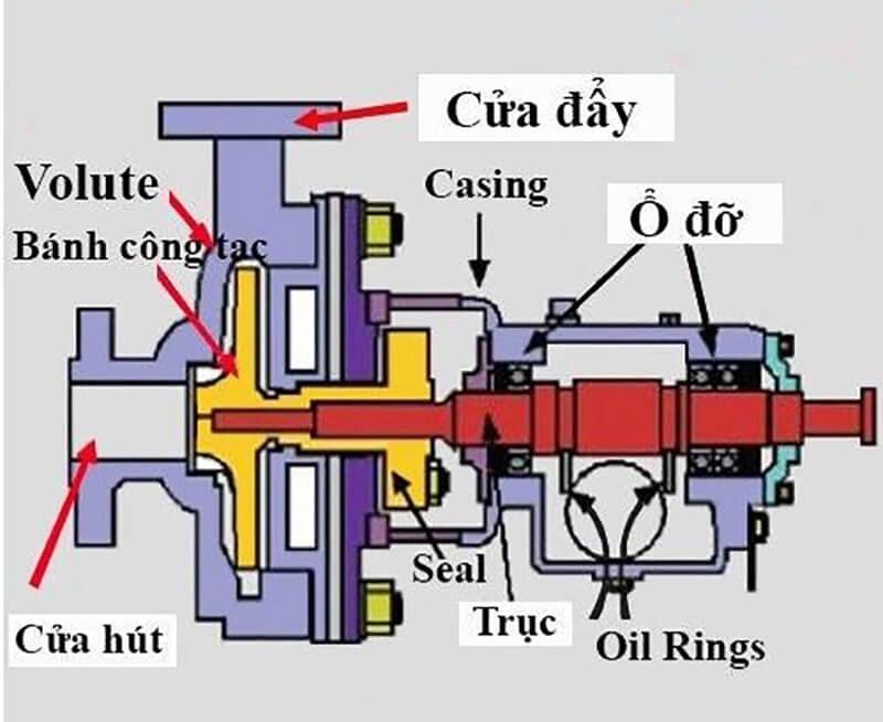 Hình ảnh cấu tạo các bộ phận của bơm ly tâm