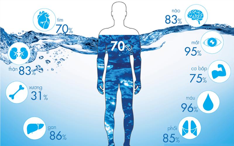 Ô nhiễm môi trường nước -Cơ thể con người chiếm 70% là nước