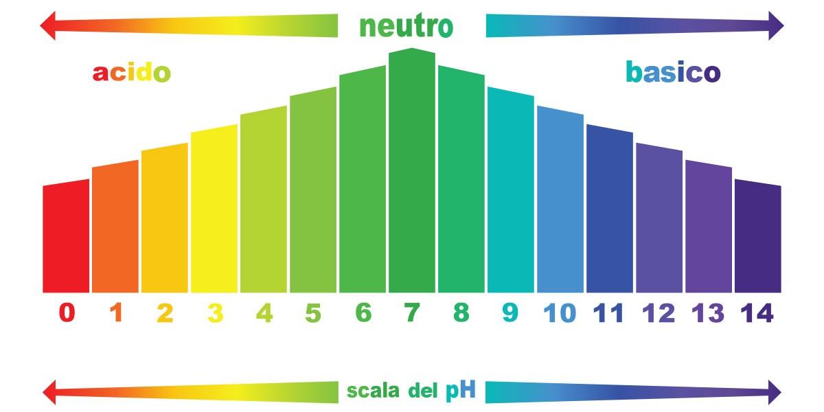 Thang đo độ pH với các màu tương ứng