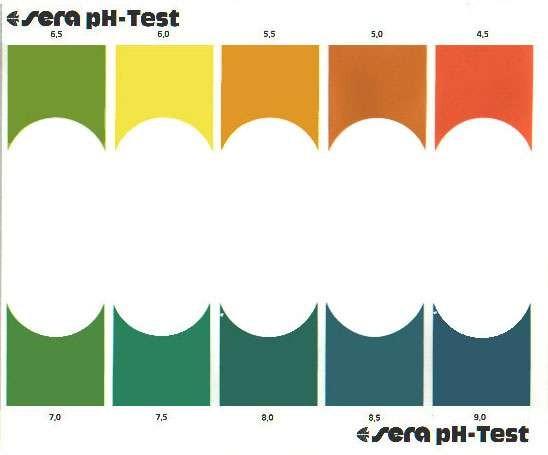Thang màu của bộ sản phẩm pH Test