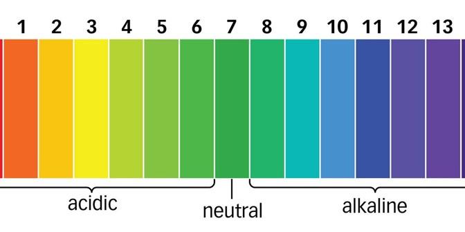 Màu sắc tương ứng với giá trị pH của giấy đo pH