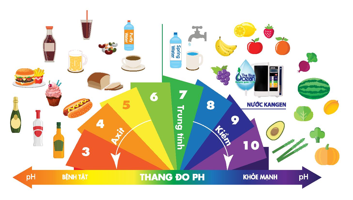 Nồng độ pH trong thức ăn của con người