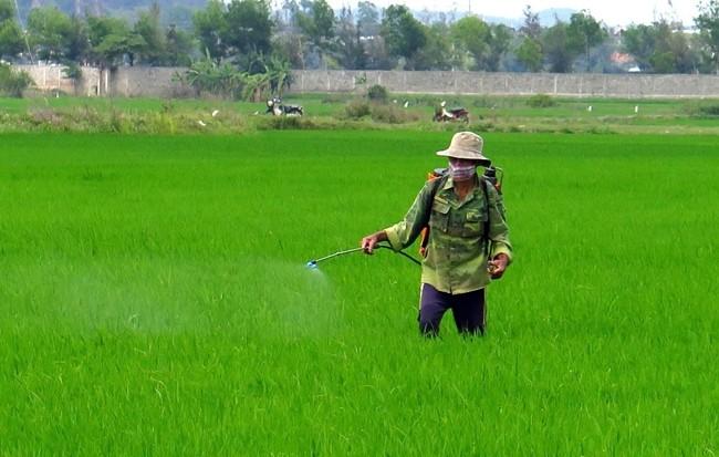 Là chất hoà tan trong dầu parafin trong thuốc trừ sâu