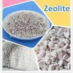 Cách điều chế và những ứng dụng của Zeolite
