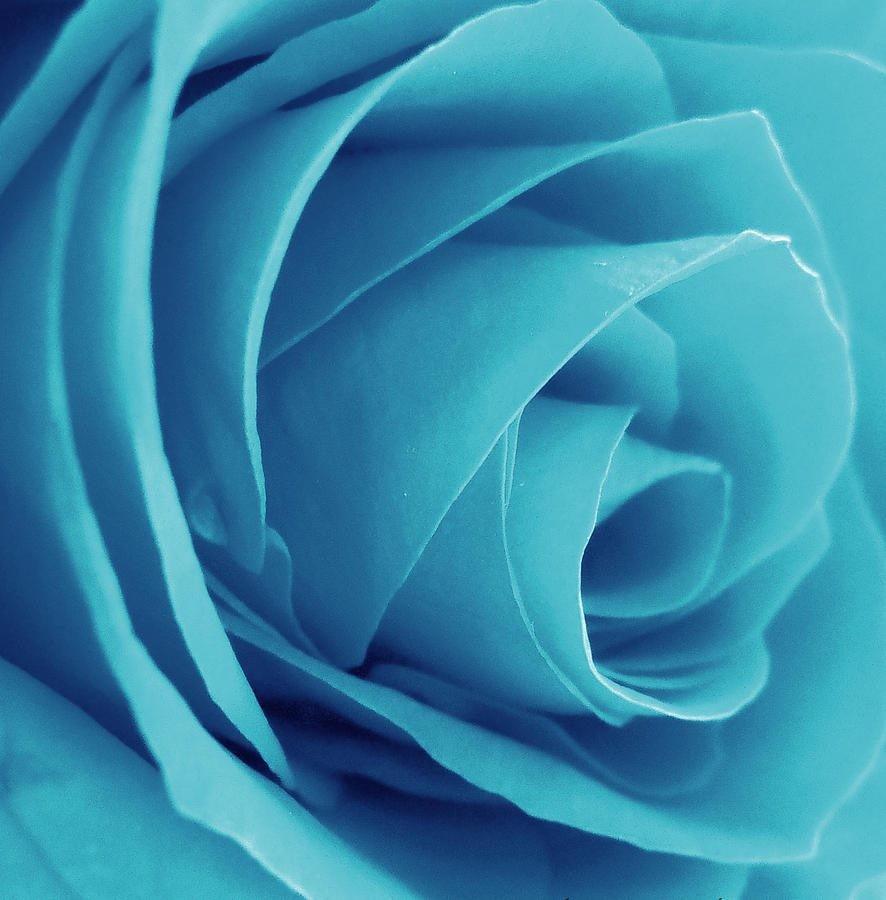 Cyan là màu xanh lơ trong hệ 4 màu CMYK