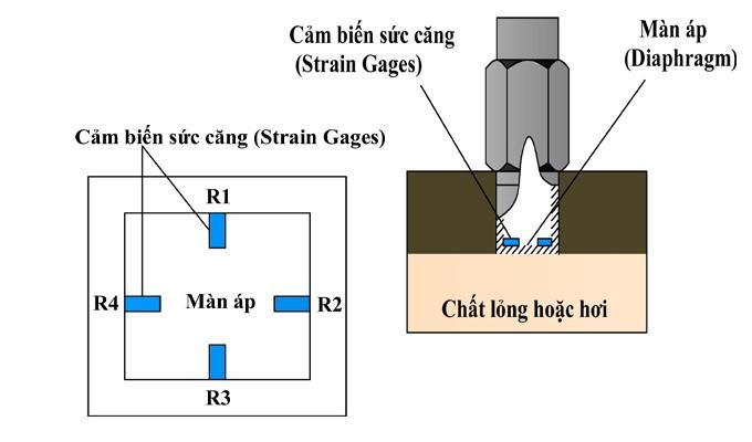 Cấu tạo bên trong của cảm biến đo áp suất