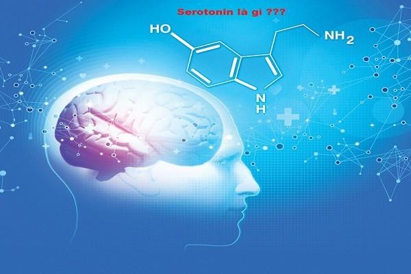Serotonin - Hormone hạnh phúc