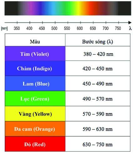 Màu chàm nằm ở vị trí giữa màu xanh lam và màu tím