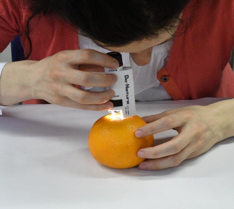 Điều chỉnh ánh sáng phù hợp để quan sát mẫu vật