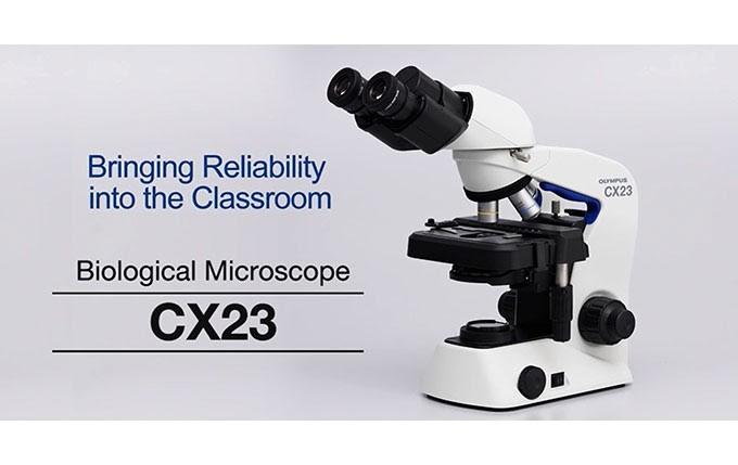 Hình ảnh kính hiển vi quang học