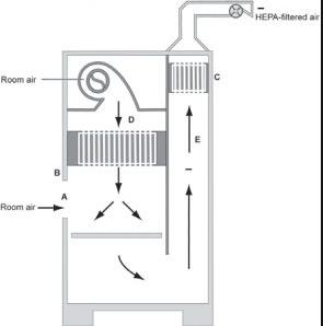 Cấu tạo tủ an toàn cấp II, kiểu B2