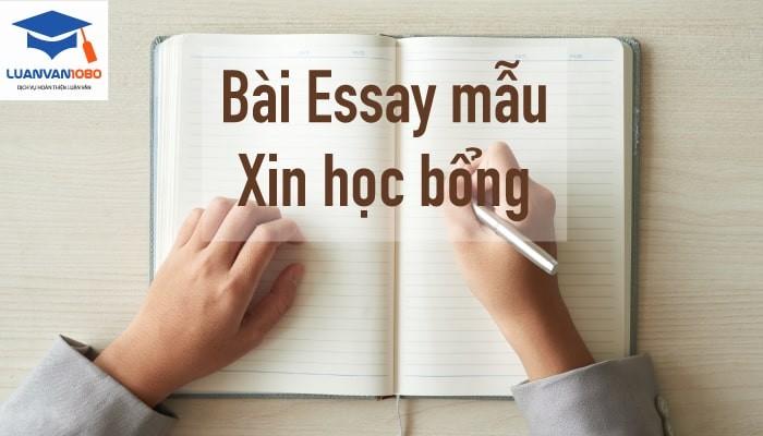 Những bài essay mẫu xin học bổng hay xuất sắc