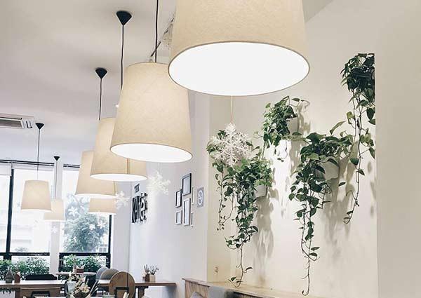Đèn thả trần cafe có chóa - Đèn thả trần cà phê có chóa