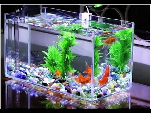 Đèn soi bể cá - Đèn rọi bể cá mini -Đèn led rọi bể cá