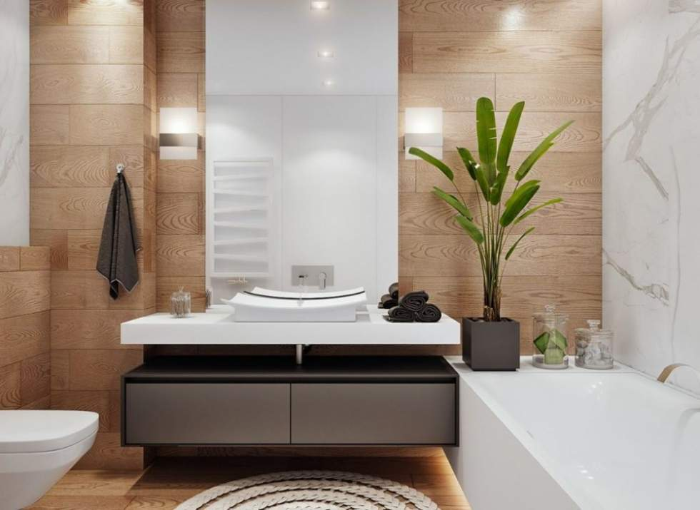 Bài trí chậu cây trong nhà vệ sinh giúp không khí trong lành