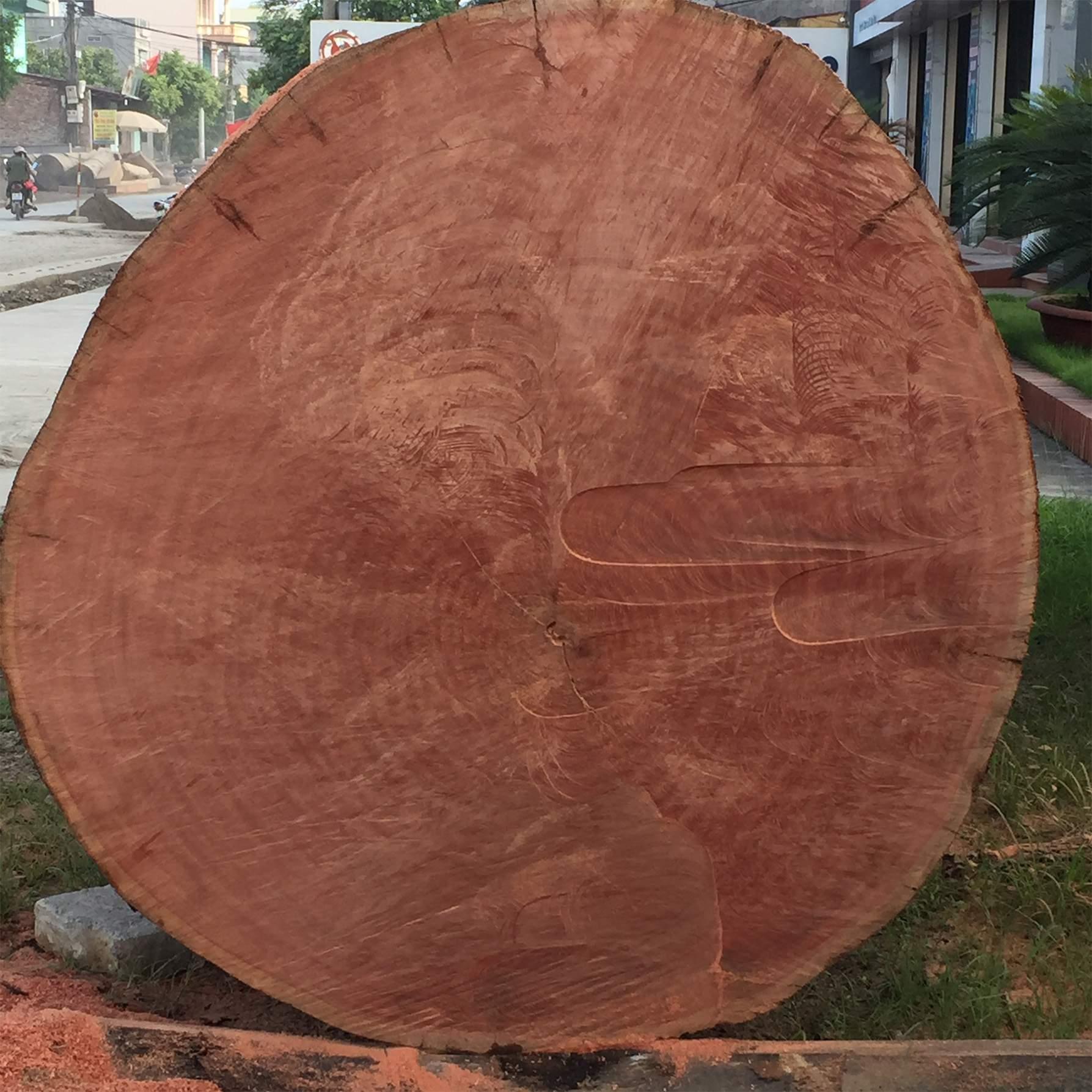 Cách nhận biết gỗ đinh hương một cách hiện đại