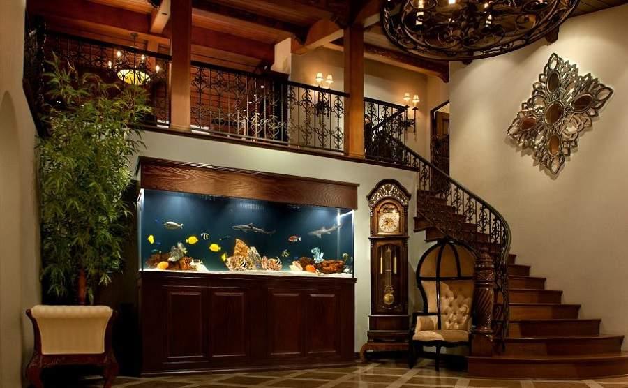 Cách trang trí cầu thang bằng bài trí  bể cá gầm cầu thang