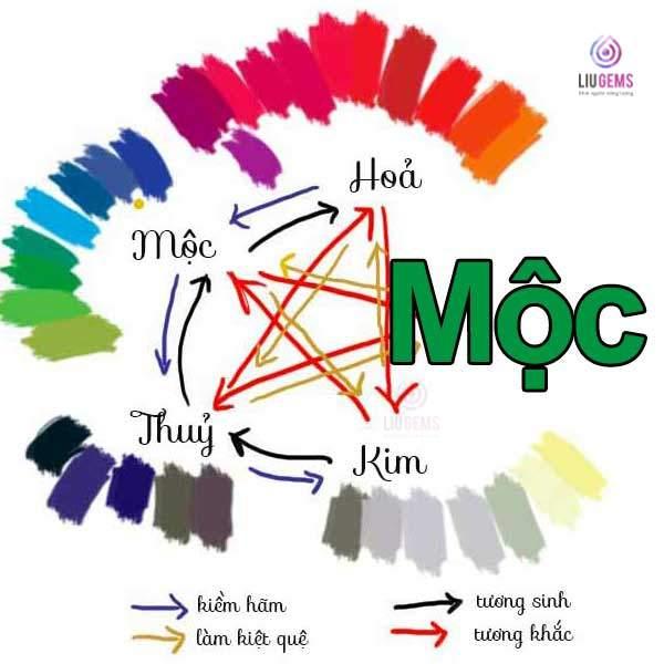 Những gam màu tương sinh và tương hợp với gia chủ mệnh Mộc