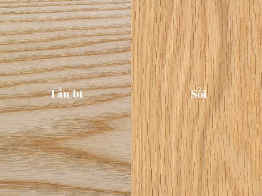 Sự khác nhau giữa gỗ sồi mỹ và sồi nga