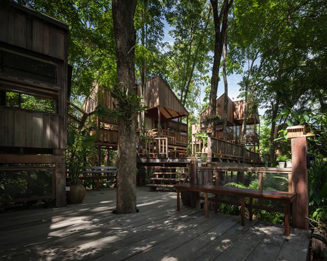 Ngôi nhà được xây dựng xung quanh các cây rất đặc biệt và gần gũi với thiên nhiên.