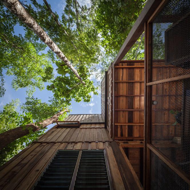 Những ngôi nhà sàn cao bằng gỗ vừa mát mẻ vừa thoáng mát