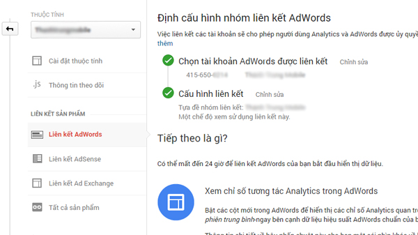 google-adwords-tu-dong-gan-the-2