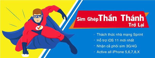 sim-ghep-la-gi-4