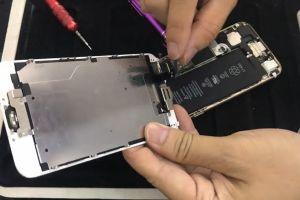 Hướng dẫn tháo lắp, cách thay pin iPhone 6 tại nhà dễ dàng nhất