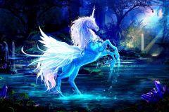 Download hình nền ngựa đẹp dành cho điện thoại
