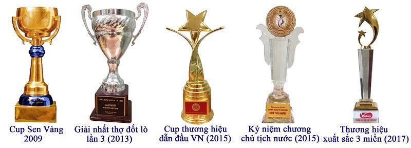 Một số cup Việt An đã đạt được