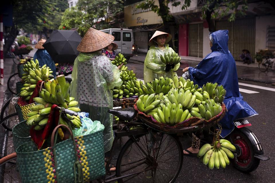 hanoi-street-food-3559156-960-720