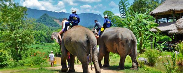 luang-prabang-elephant-village-3
