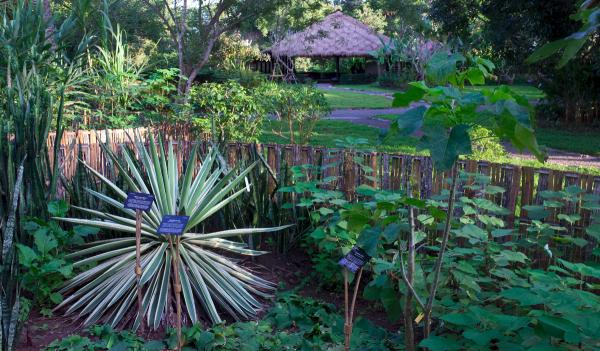 luang-prabang-pha-tad-ke-botanical-garden-2