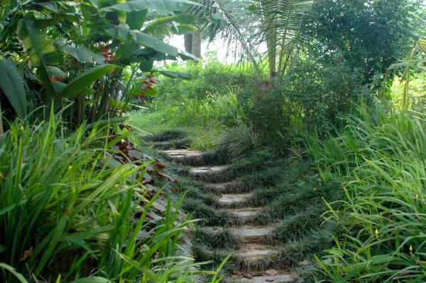 luang-prabang-pha-tad-ke-botanical-garden-3-1