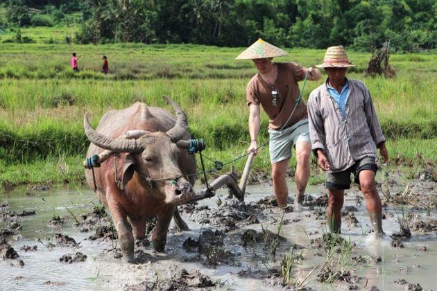 luang-prabang-rice-experience-2