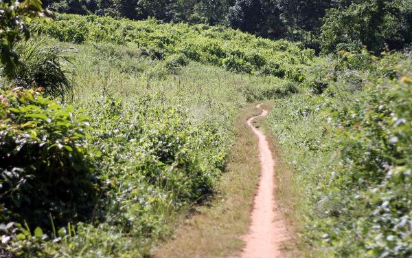 luang-prabang-trekking-route