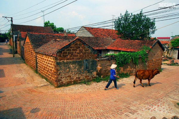 hanoi-duong-lam-ancient-village-7