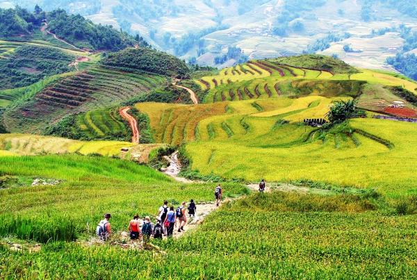 sapa-road-to-village-1