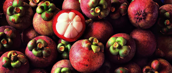 exotic-fruits-banner